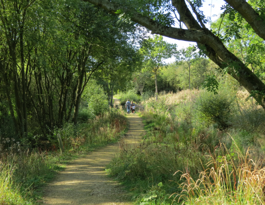 Ufton Fields nature reserve